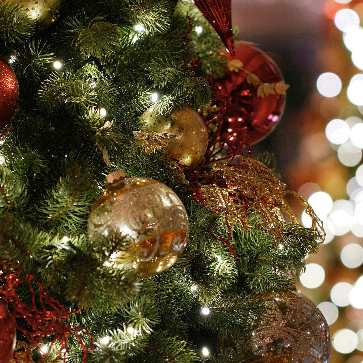 🎉 8 conseils pour survivre aux fêtes de fin d'année ! -