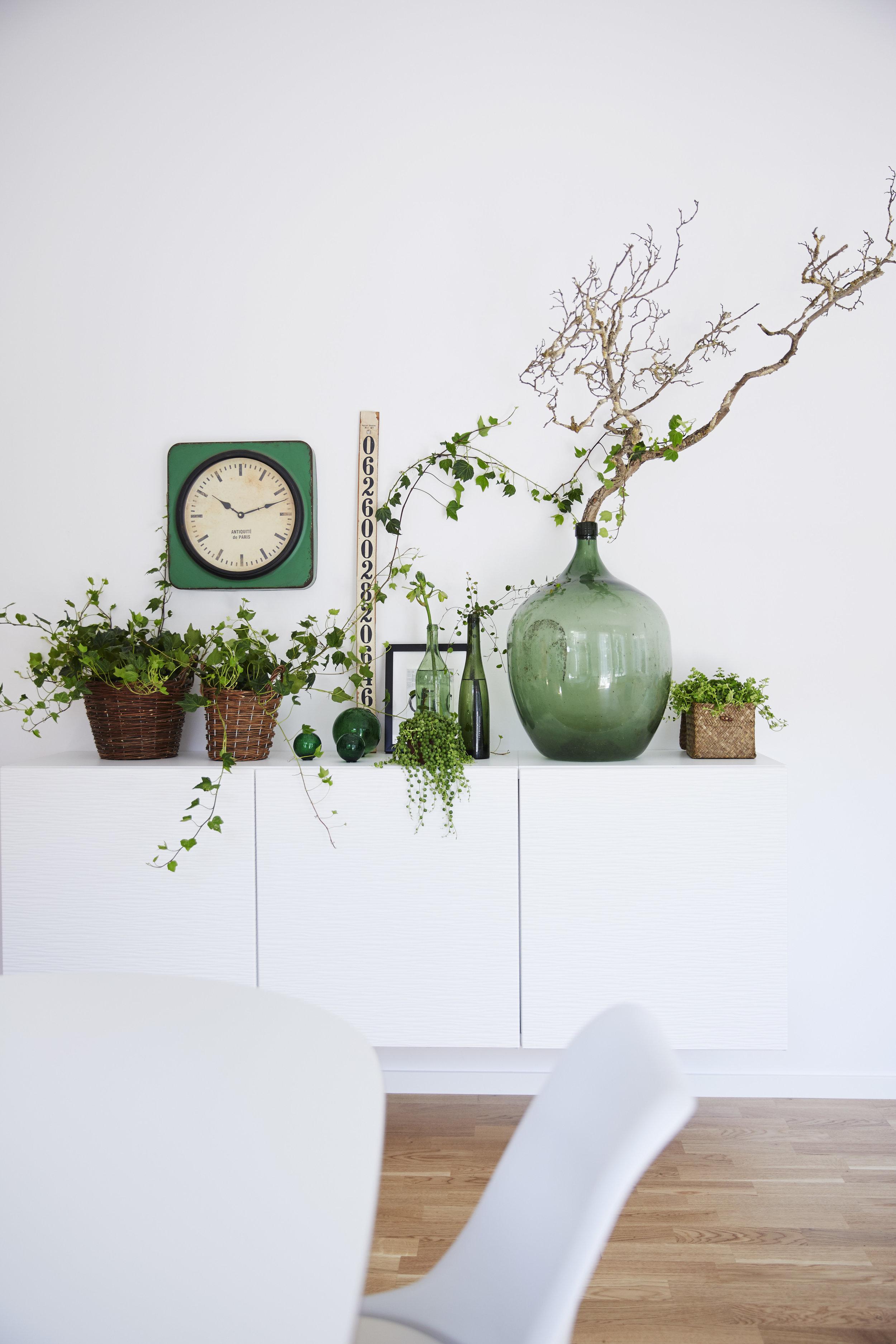 Ladda med gröna detaljer och fixa vårens skönatrend. Foto. Blomsterfrämjandet