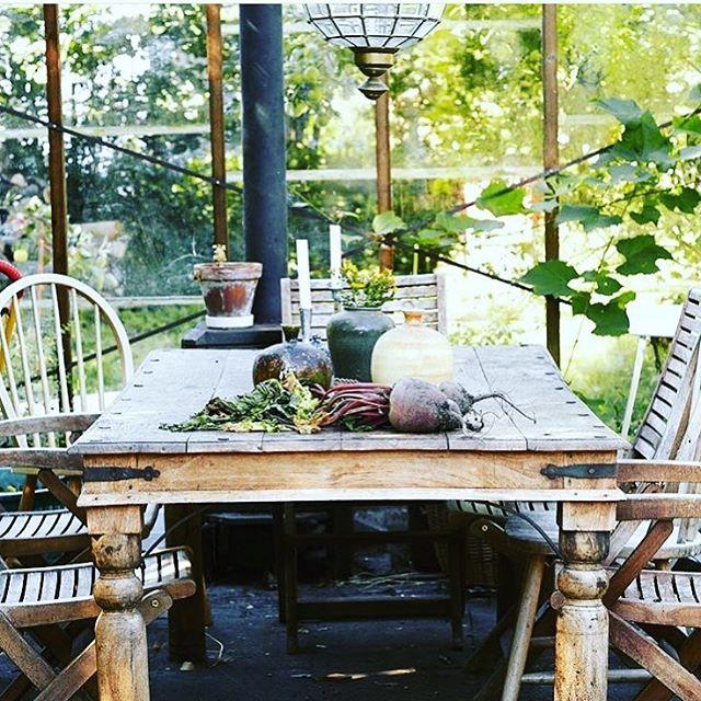 Vi drömmer om ett växthus! Skissar och skissar📐✏️💛. Har nästan flyttat in utan att det finns🌱☀️Våra tomatplantor och chili behöver plats. Men framför allt är vi ute efter sommarens vardagsrum!💛 #växthus #sommarkänsla #sommarkväll #odla #homeinspo #scandinavianhome #skåne #hem_inspiration #vintagestyle Foto:HD