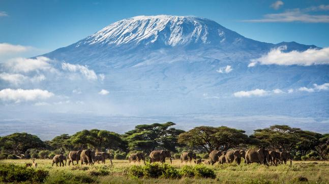 25th August 2017 - We are extremely grateful to many individuals, for example Adam Lamb who safely descended from the summit Mount Kilimanjaro on this day, having climbed in support of the Trust.