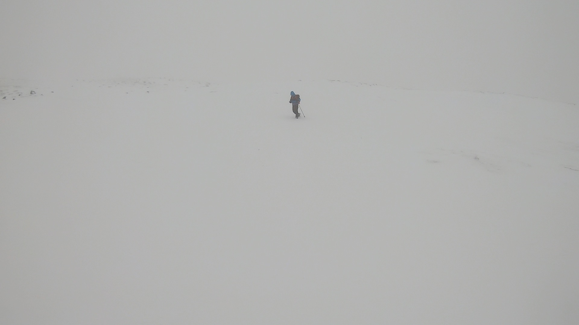 Nav white out.jpg