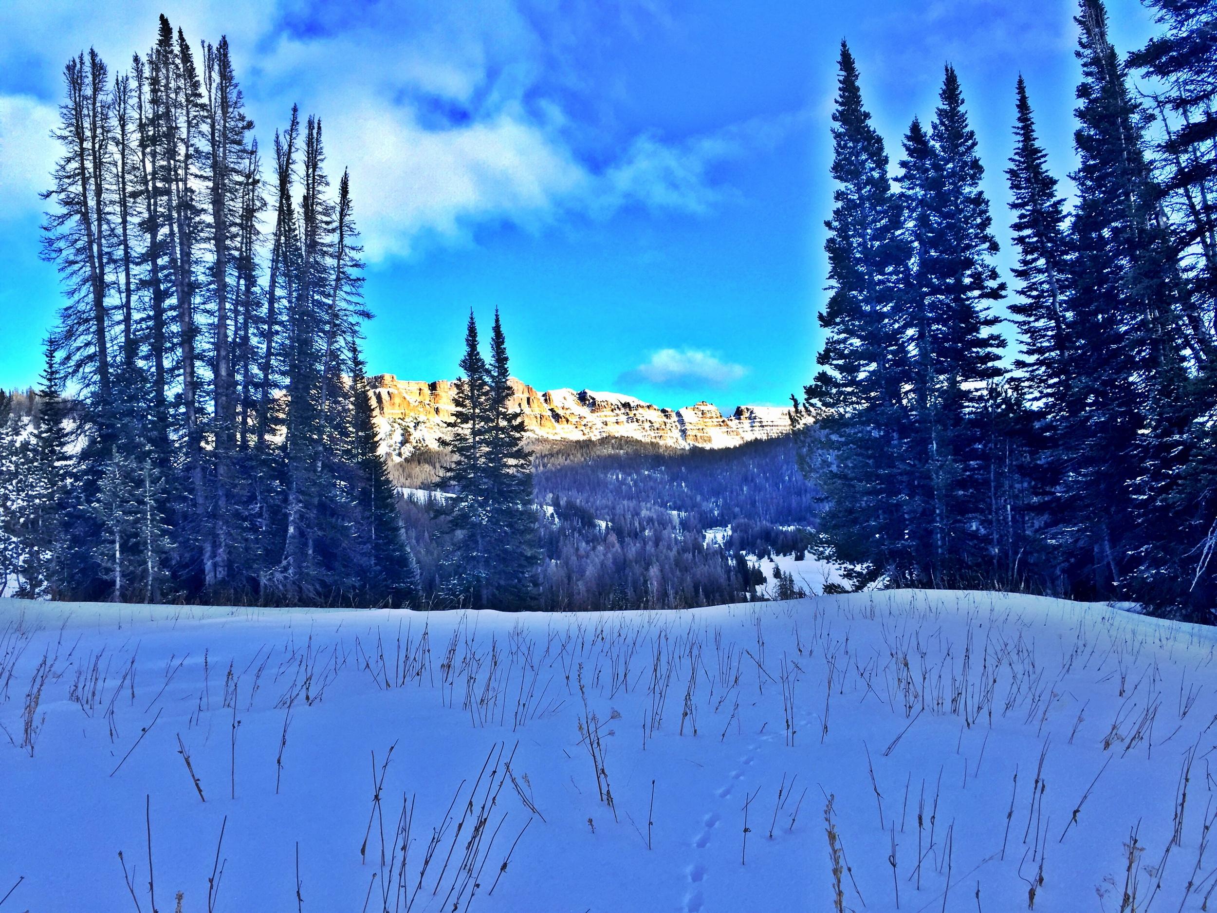 Grungy Slopes, Moran Wyoming, Togwotee Mountain Lodge 22.jpg