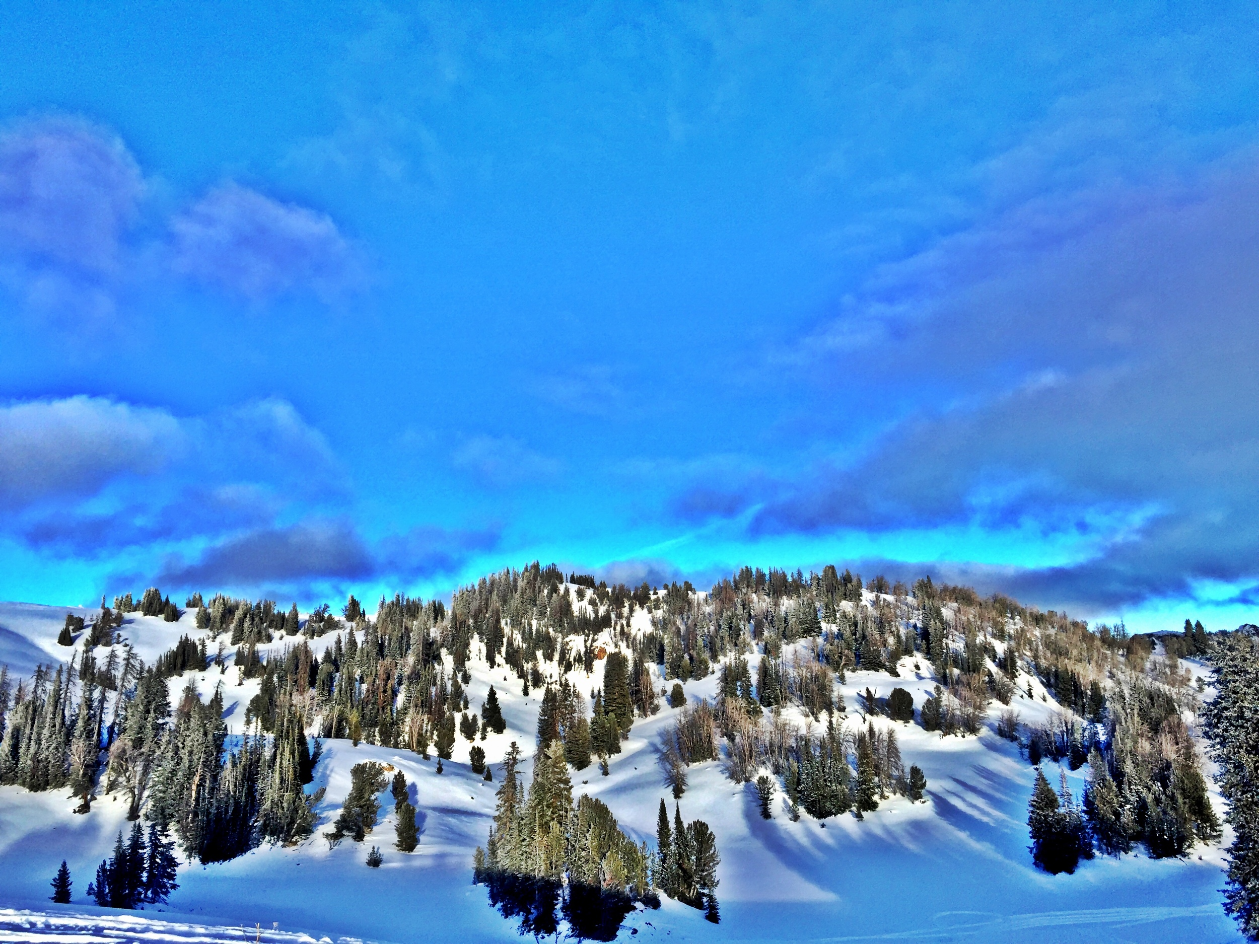 Grungy Slopes, Moran Wyoming, Togwotee Mountain Lodge 24.jpg