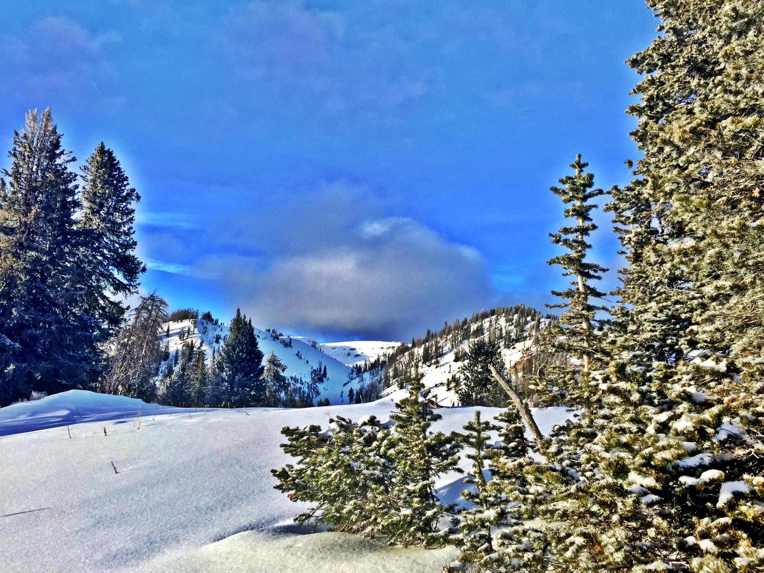 Grungy Slopes, Moran Wyoming, Togwotee Mountain Lodge 25.jpg