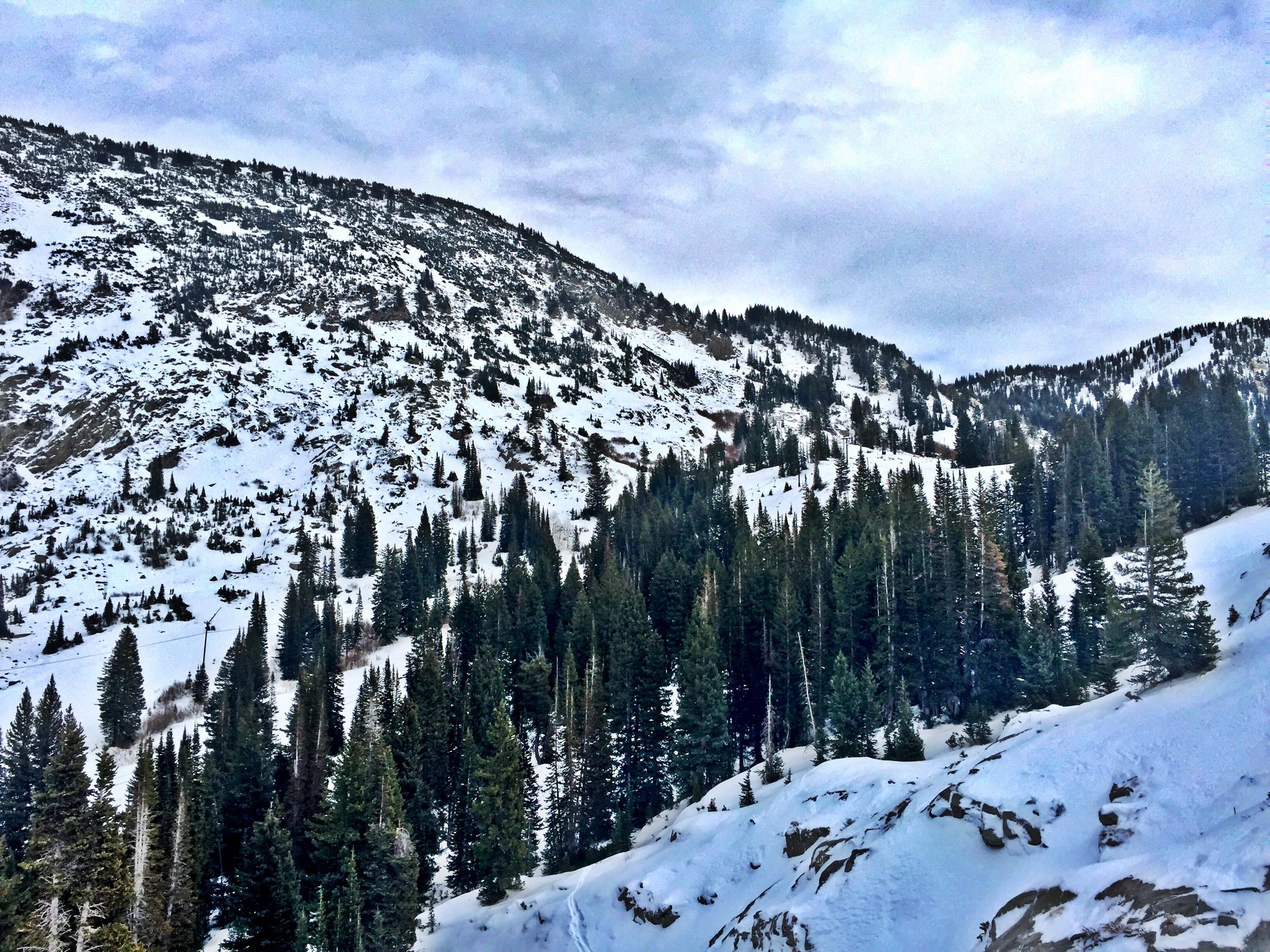 Grungy Slopes, Alta Utah, Goldminer's Daughter Lodge 20.jpg