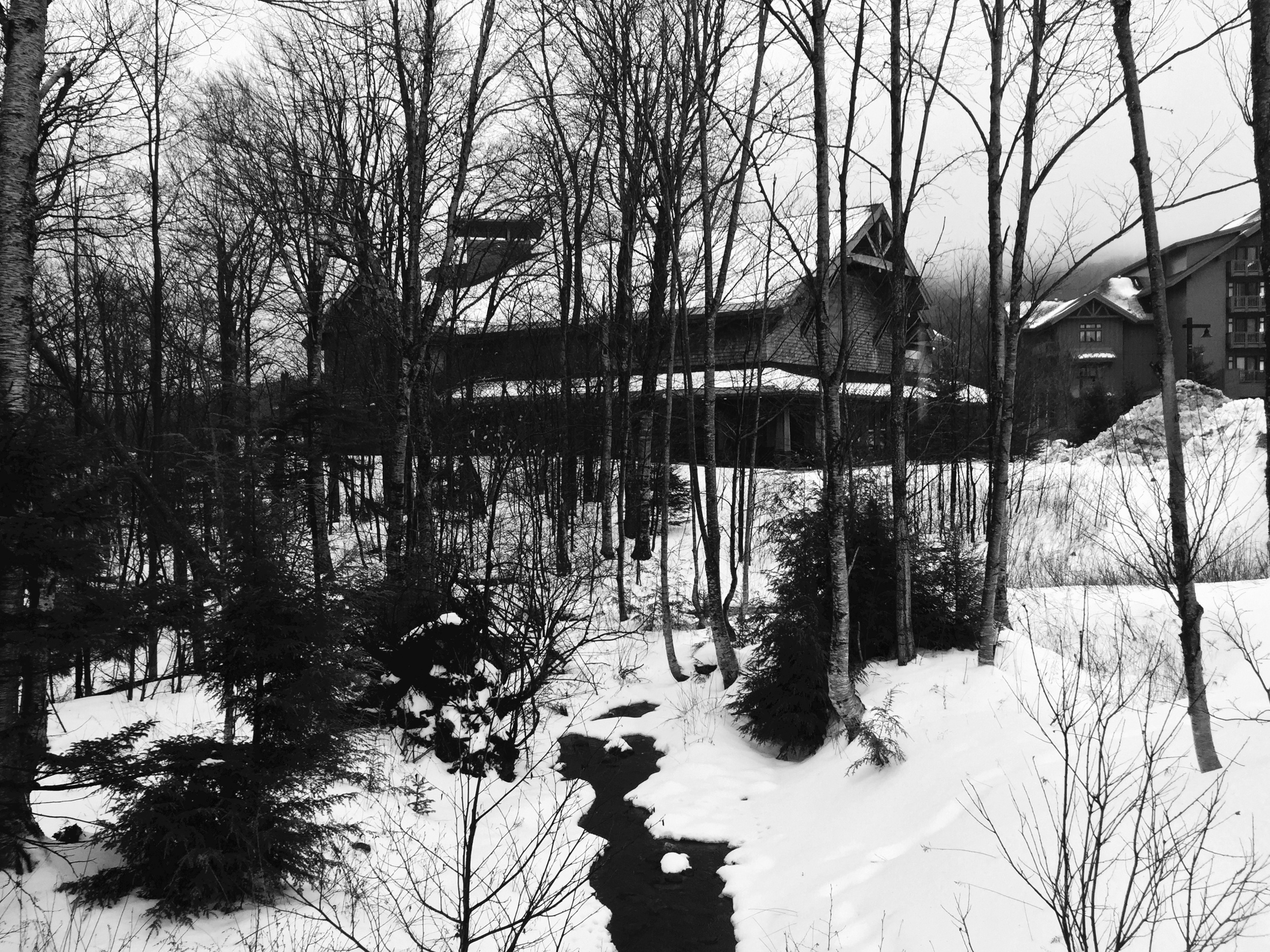 Grungy Slopes, Stowe Vermont, Stowe Mountain Lodge 5.jpg