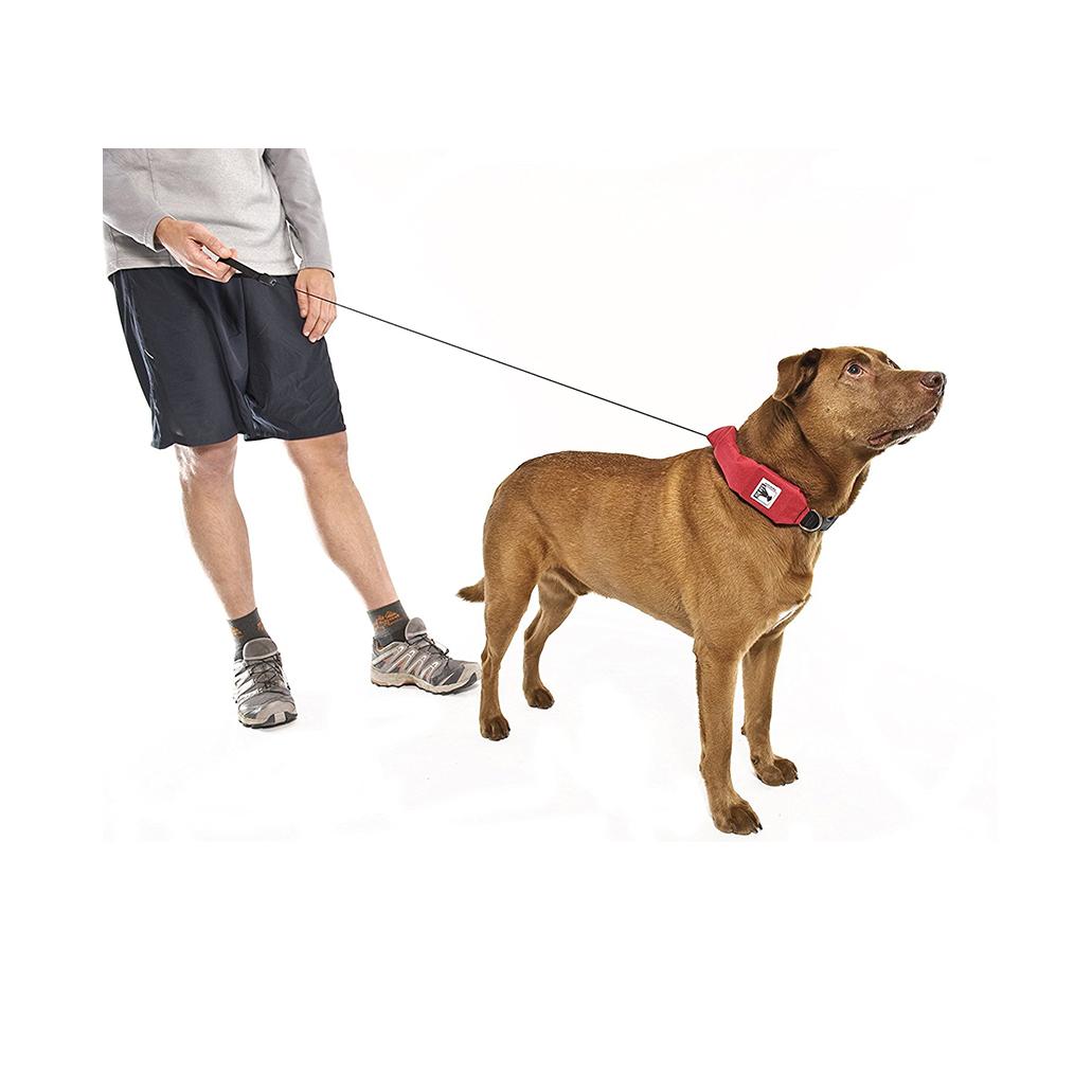 Rad Dog, $39.95