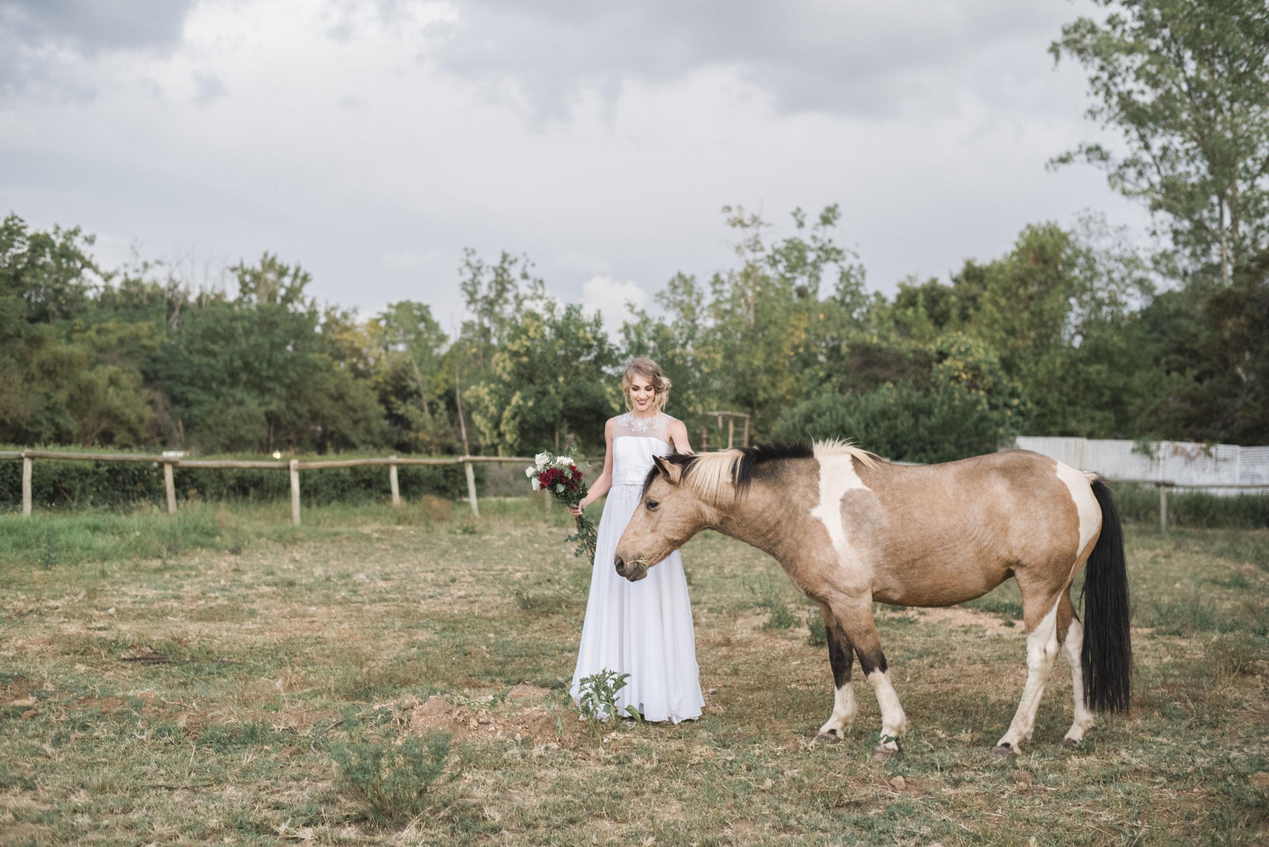 Bronwyn Alyson Weddings 02.jpg