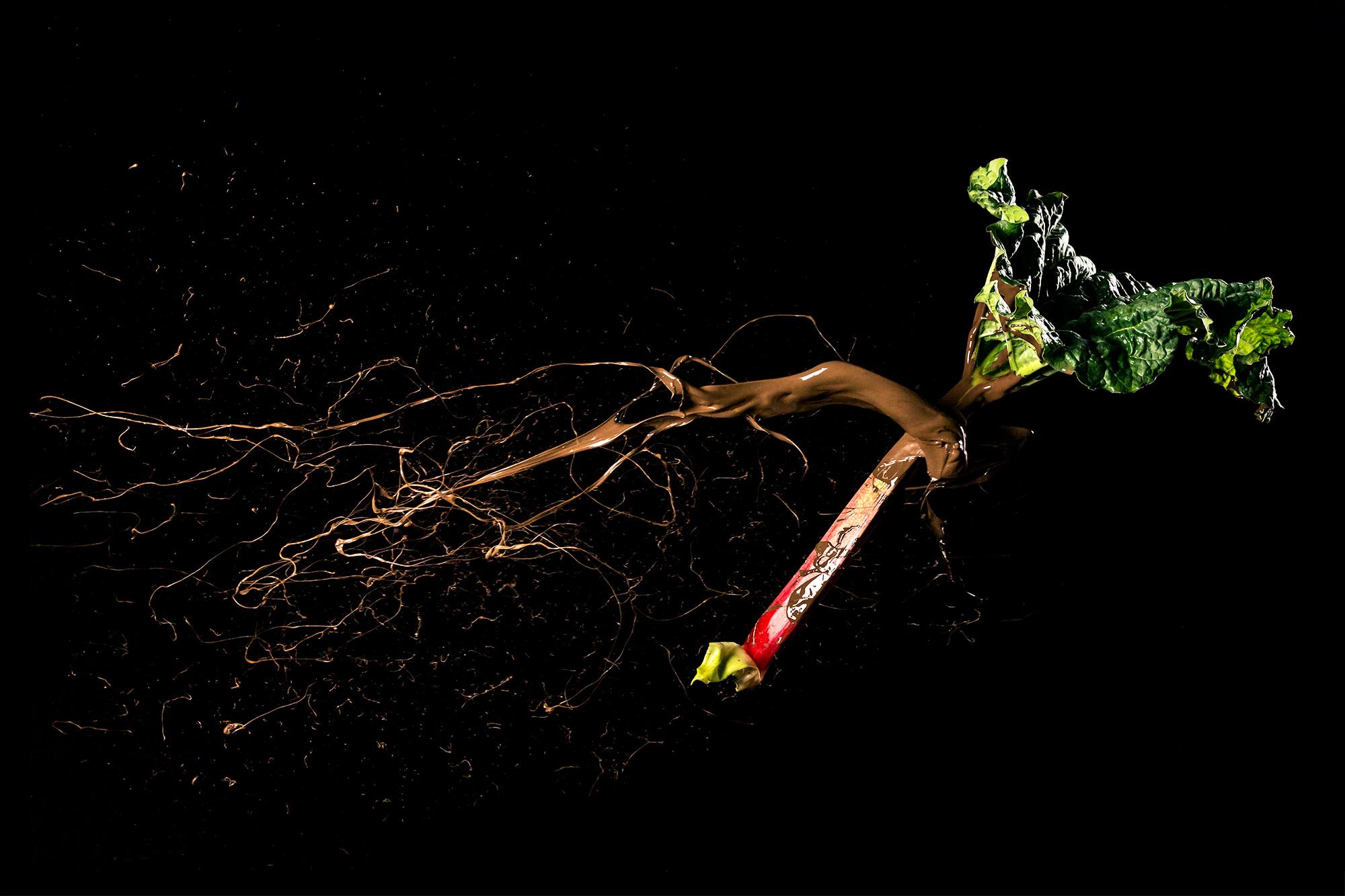 NomNom-Rhubarb.jpg