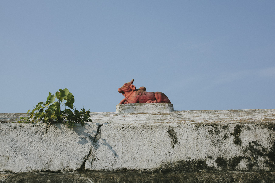 India-8_o.jpg