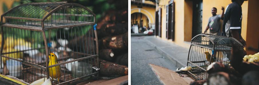 Cartagena-12_o.jpg
