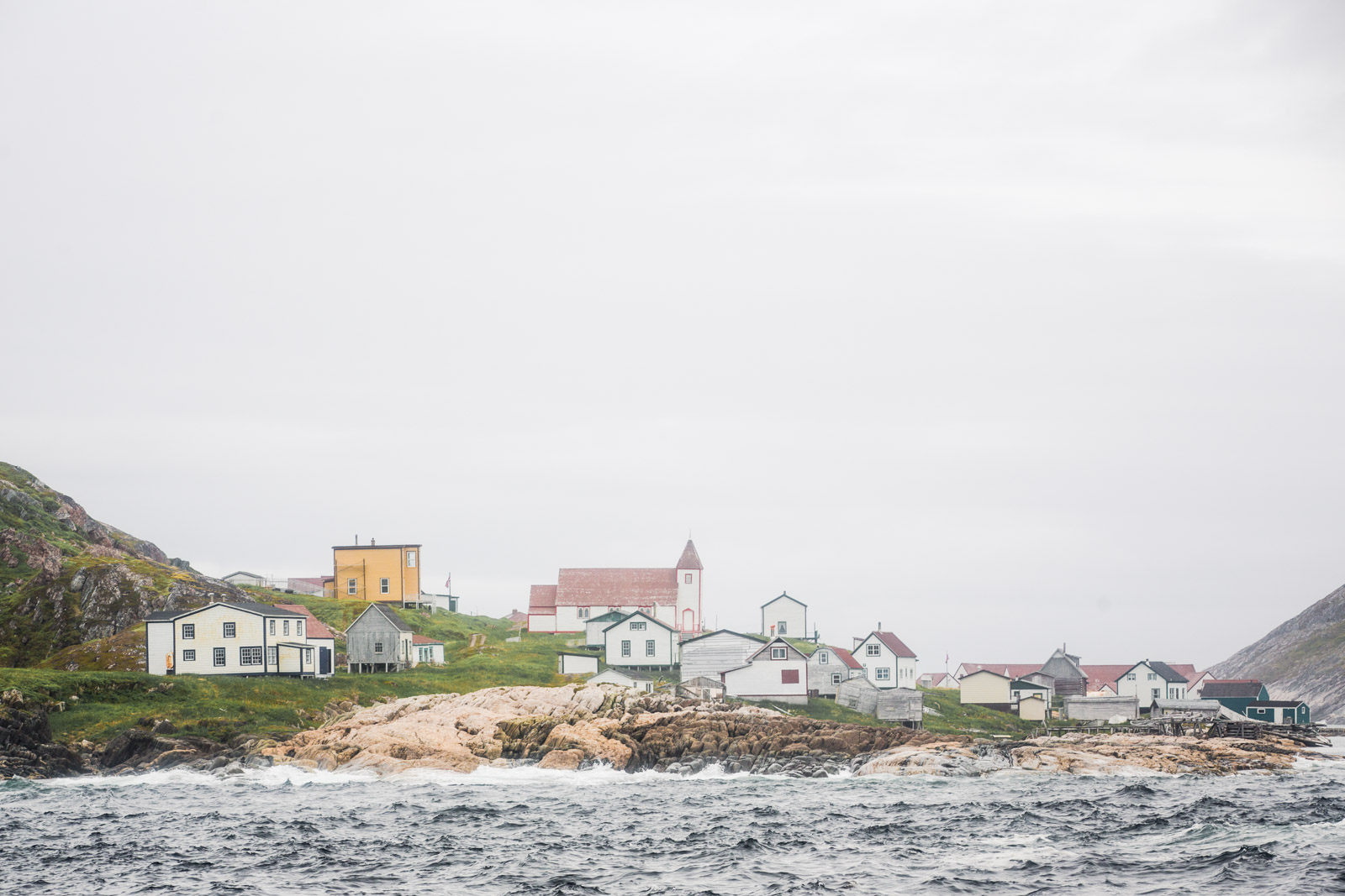 Newfoundland-8.jpg