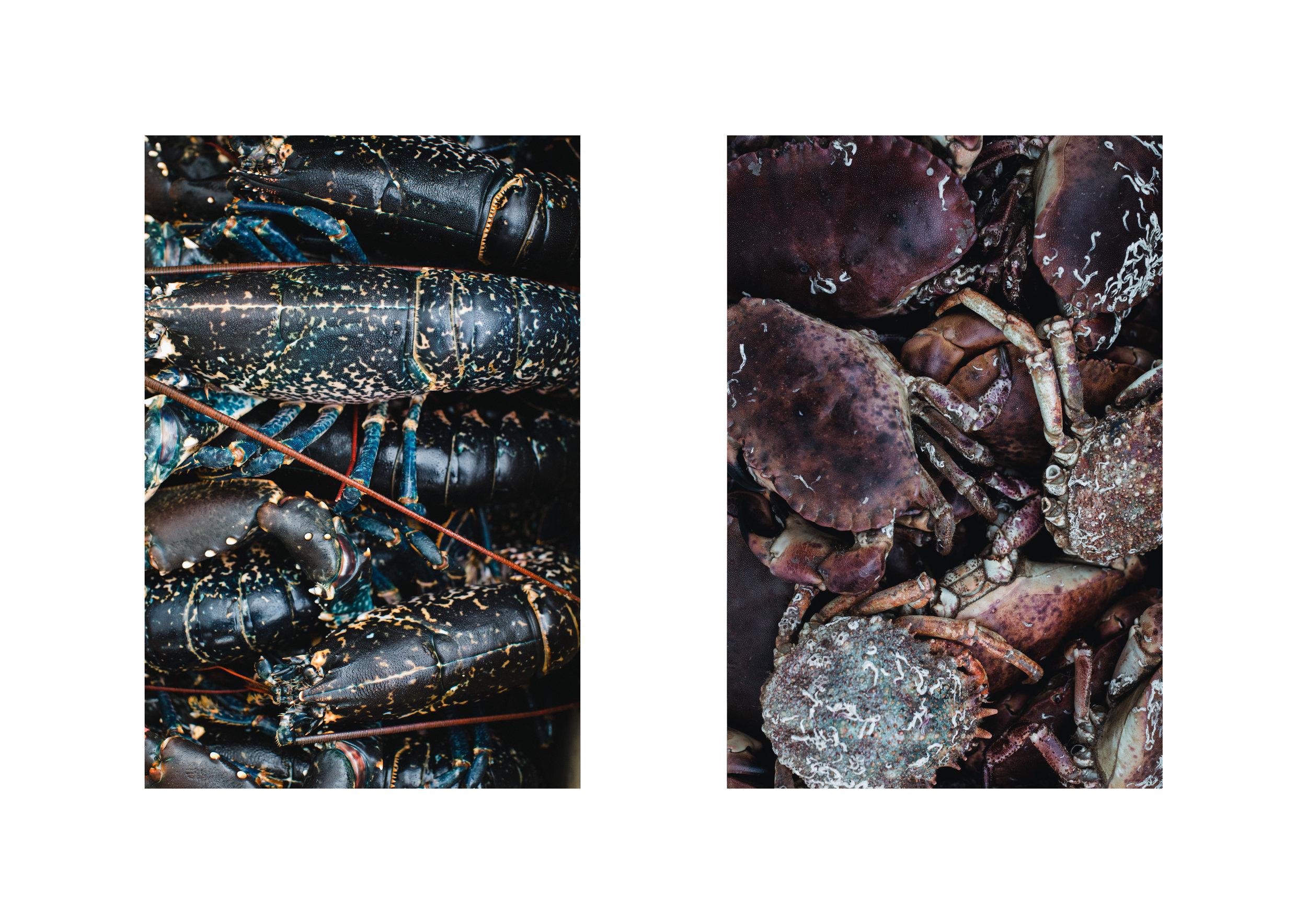 Fforest-Lobster-02.jpg