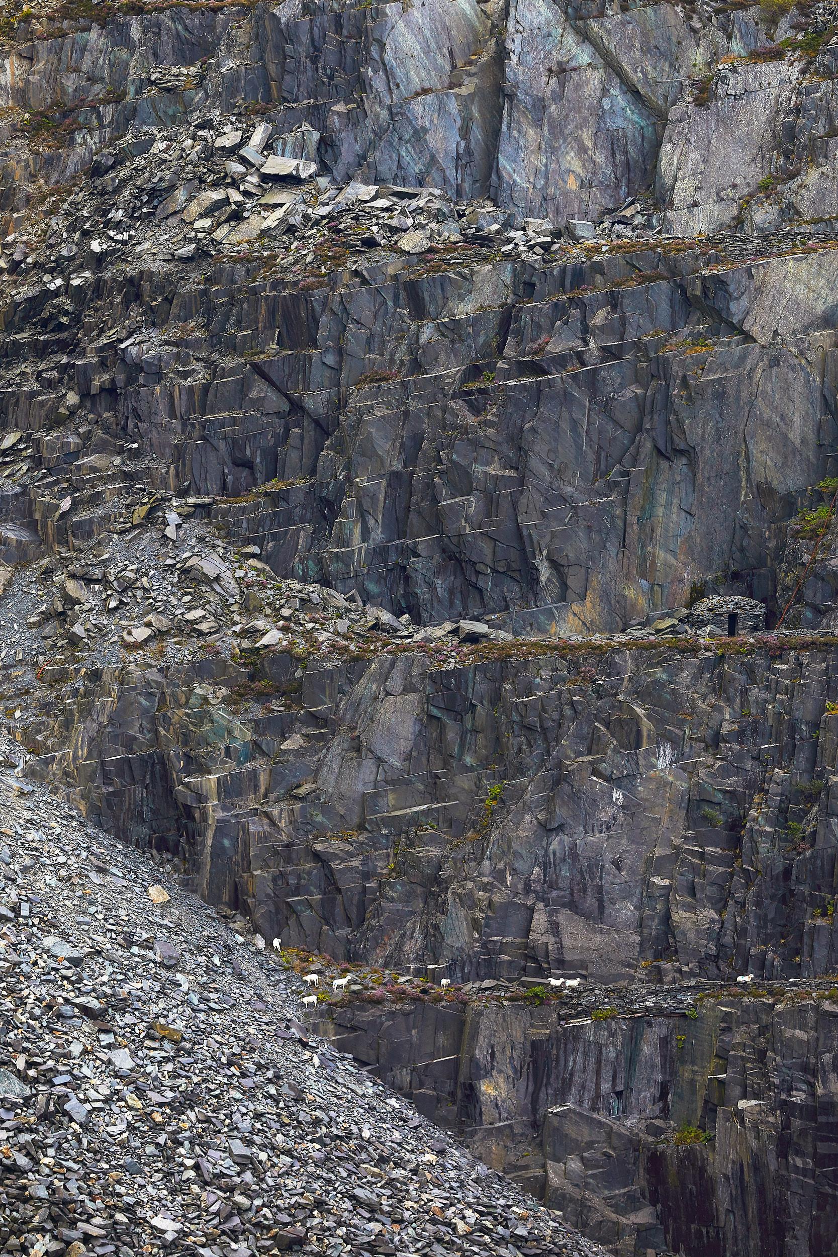 Visit-Wales-Finn-Beales-24.jpg