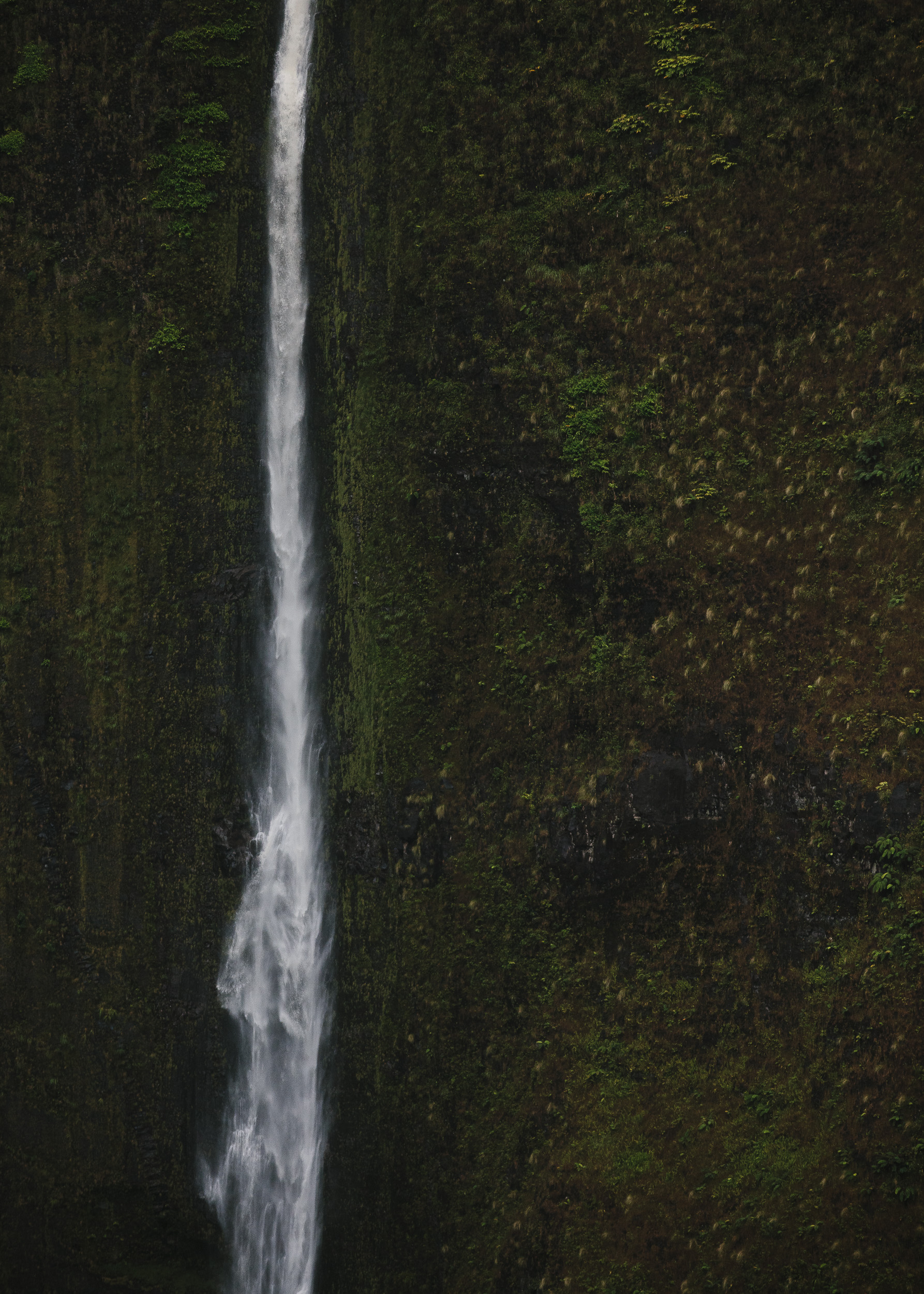 Hawaii-124.jpg