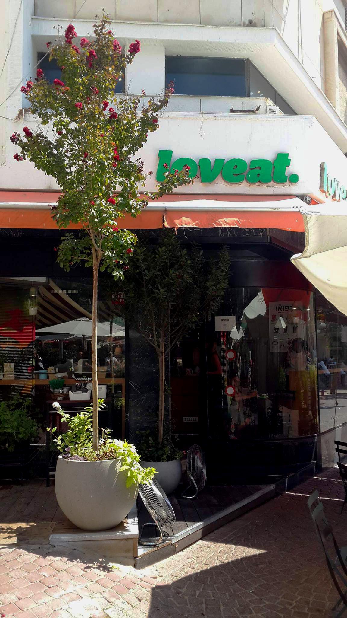 Loveat #Savant - Source: Loveat.