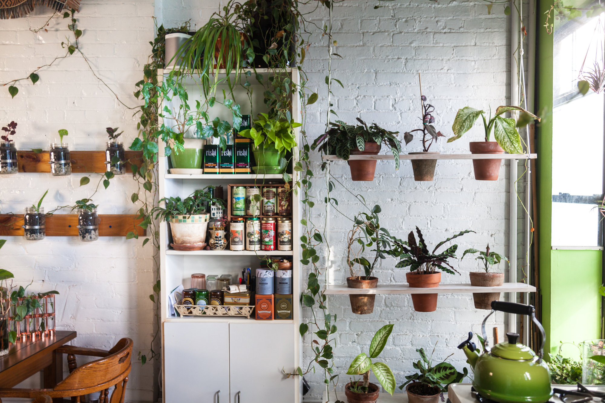 2017-May-8-Plants-SELECTS-9526.jpg