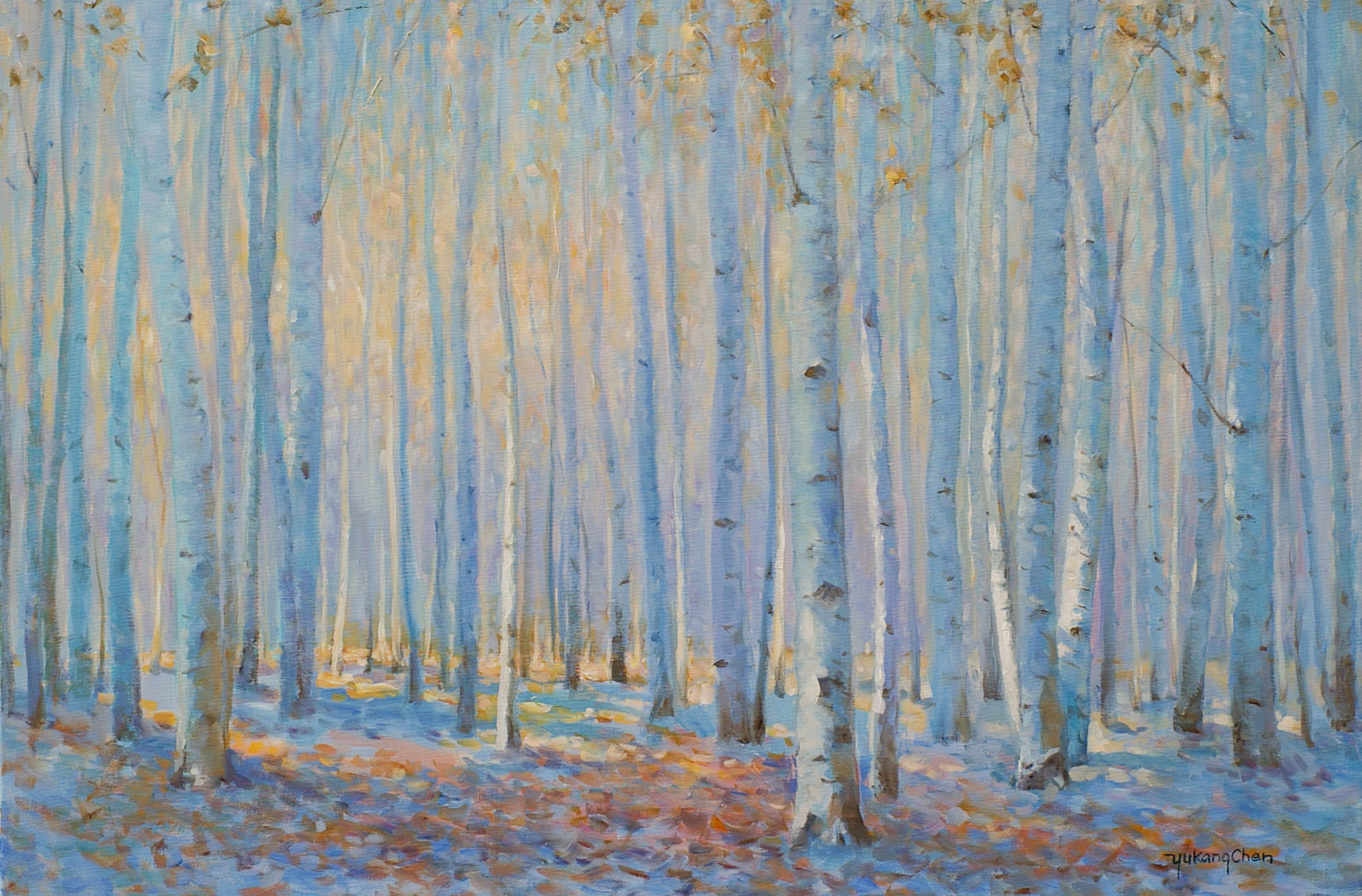 In October - Birch Forest