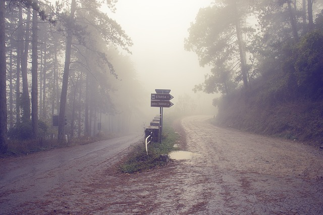 Fogginess blinds the road to your goal