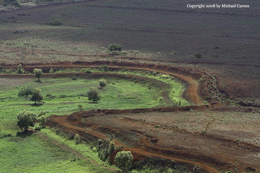 A farm field below the Sleeping Giant trail on Kaua'i