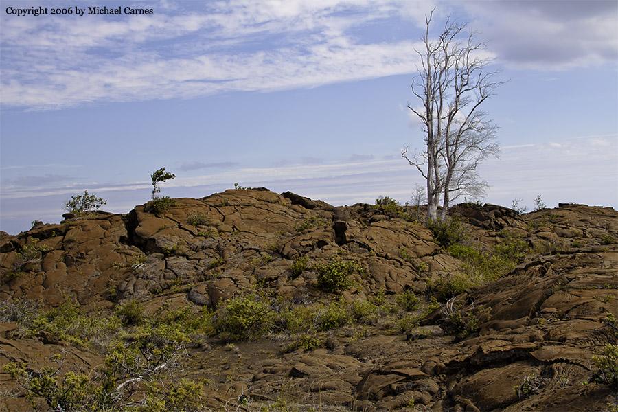 The Ka'u Desert. A lava desert on the Big Island