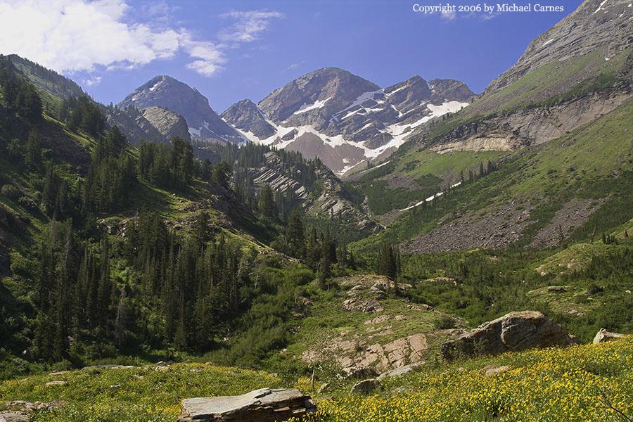 Midsummer meadow behind Twin Peak