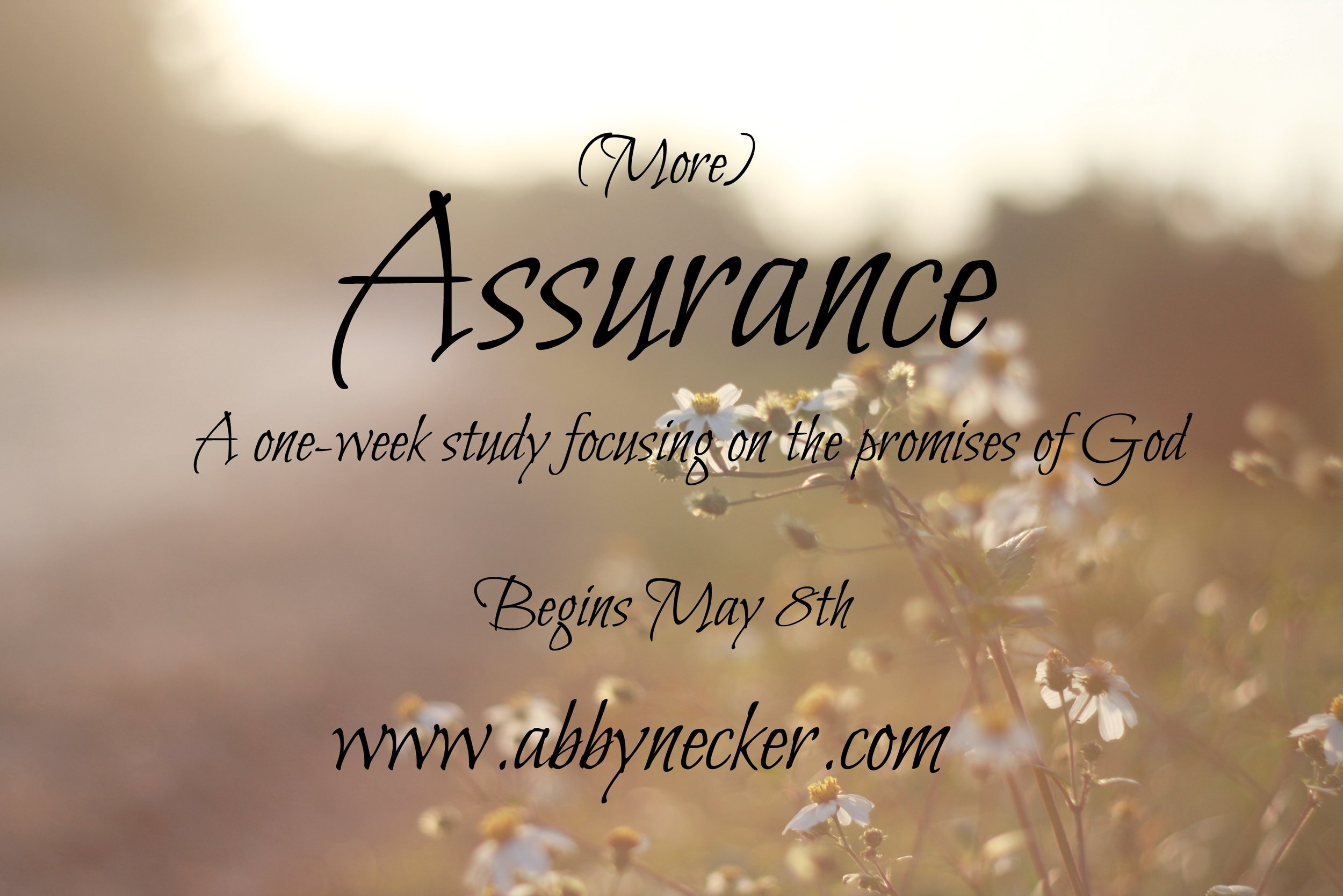 More Assurance
