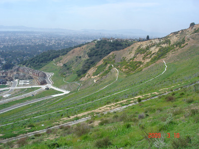 Once the site of Leona Quarry, this East Bay hillside was transformed by a large-scale restoration project. Photo courtesy David Gilpin.