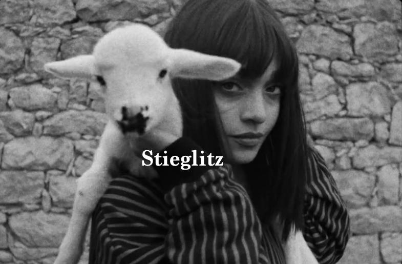 Stieglitz .png