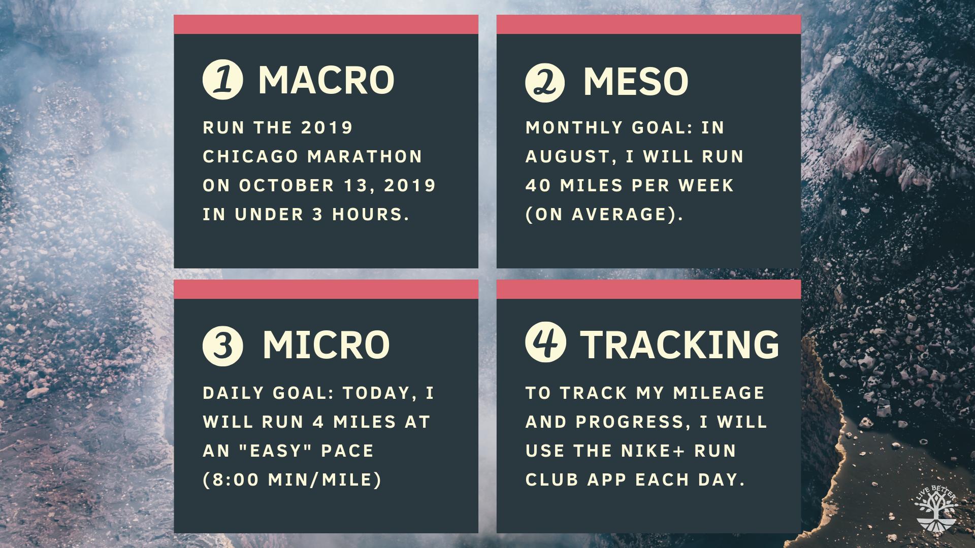 macro meso micro tracking