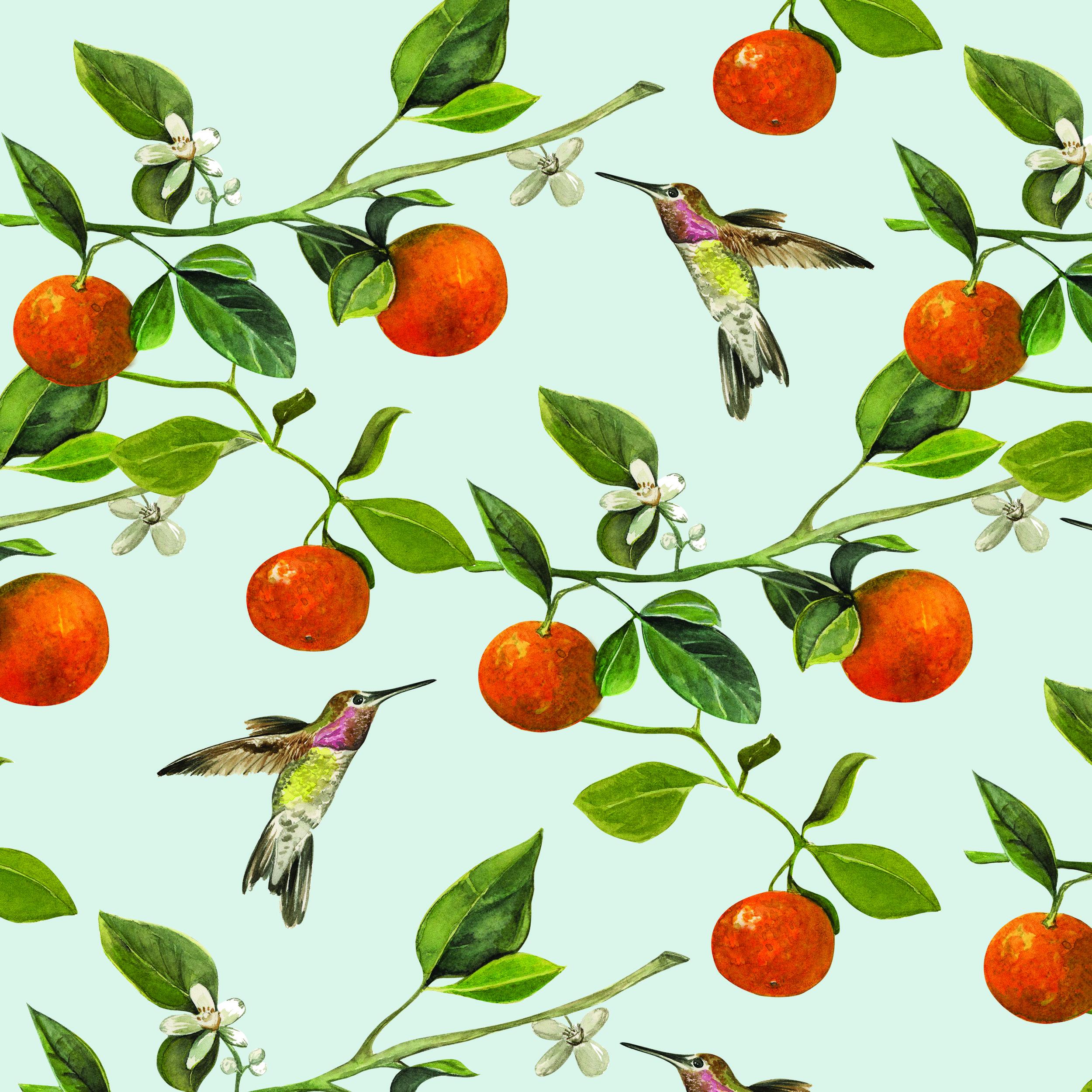 hummingbirdorange18x18adaptive.jpg