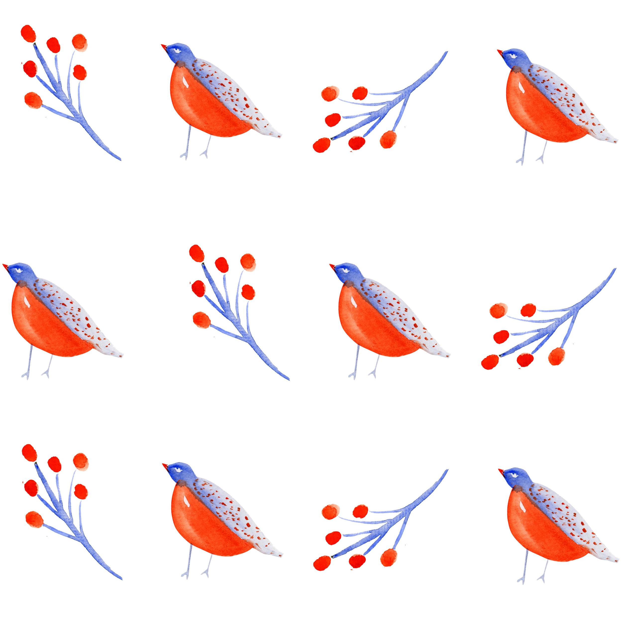 orangebluebird.jpg