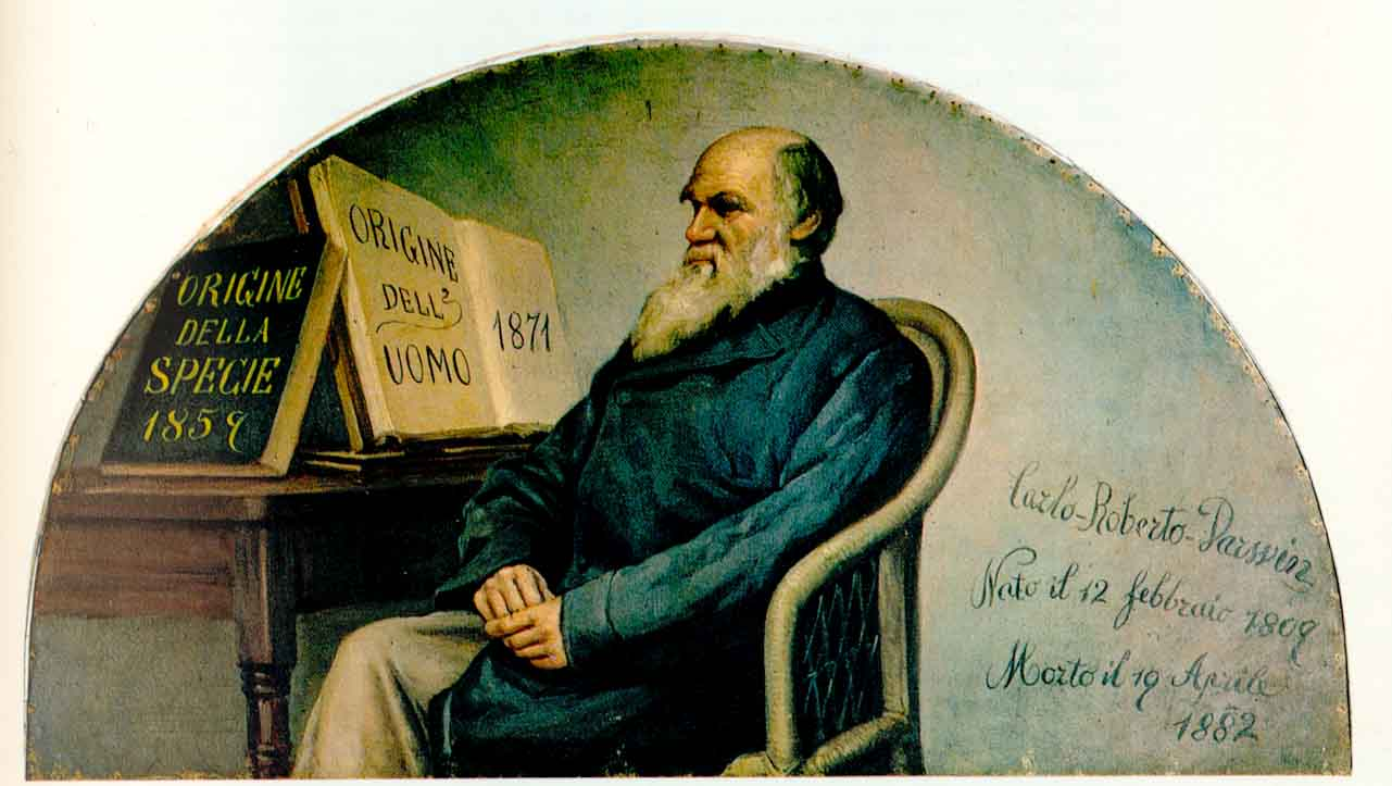 Italian panel (ca. 1890) featuring Charles Darwin, on display at the Turin Museum of Human Anatomy.   Wikimedia Commons  (public domain)