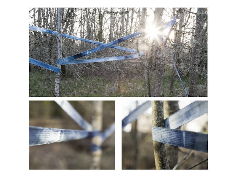Jaden J. A. Hastings, On the Subjugation of Nature (2015), 18.3m x 10.2cm, cyanotype on textile. (reproduced with permission)