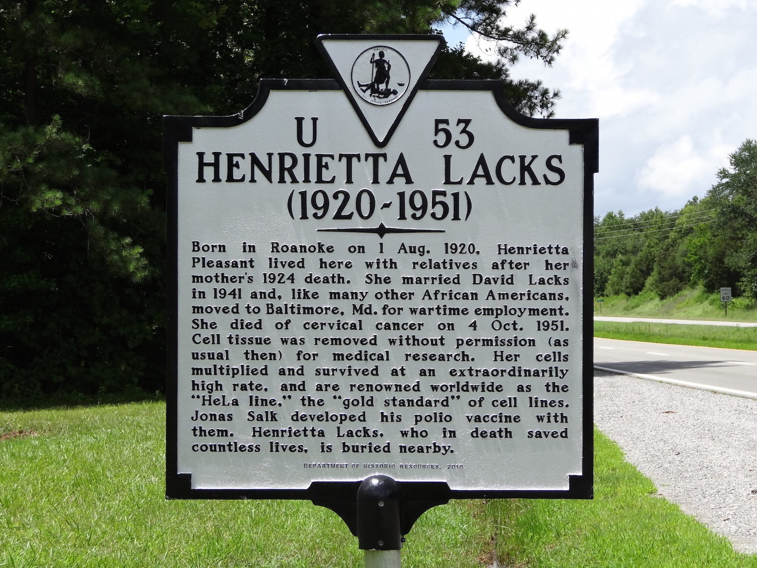 Much too late, a historical marker in Clover, Virginia recognises Henrietta Lacks' contribution to medical research.   Emw/Wikimedia Commons  (CC BY-SA 3.0)