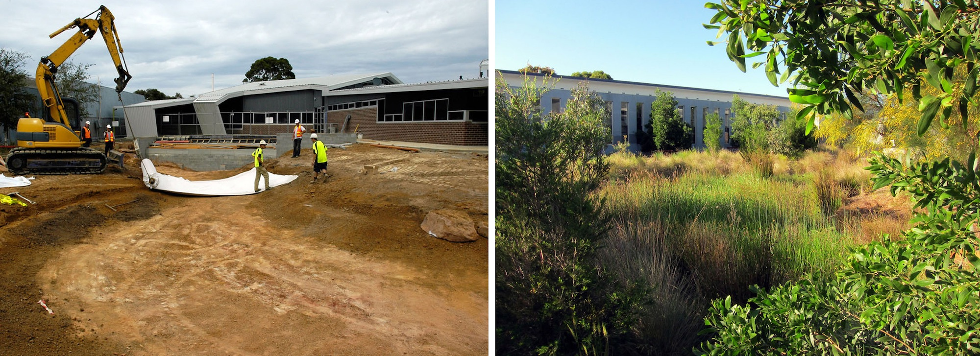 Building the wetland ecosystem among the school buildings at Bentleigh Secondary College. Left: Construction begins in 2009. Right: Present day. Photos courtesy of Bentleigh Secondary College.
