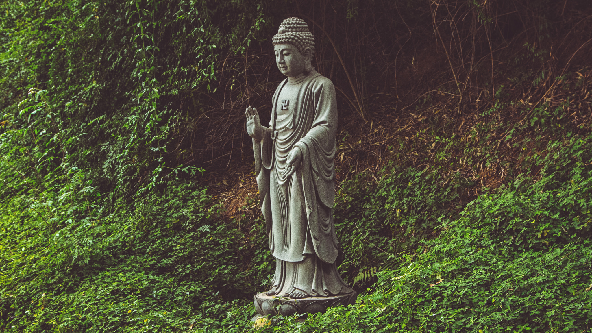 In dealing with uncertainty, scientists could learn something from Buddhism.   Pedro Travassos/Flickr  (CC BY 2.0)