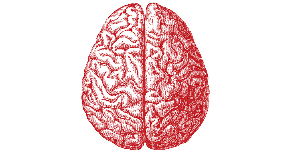 Chemical signals in the brain have a large part to play in regulating food intake.  Allan Ajifo/Flickr  (CC BY 2.0)
