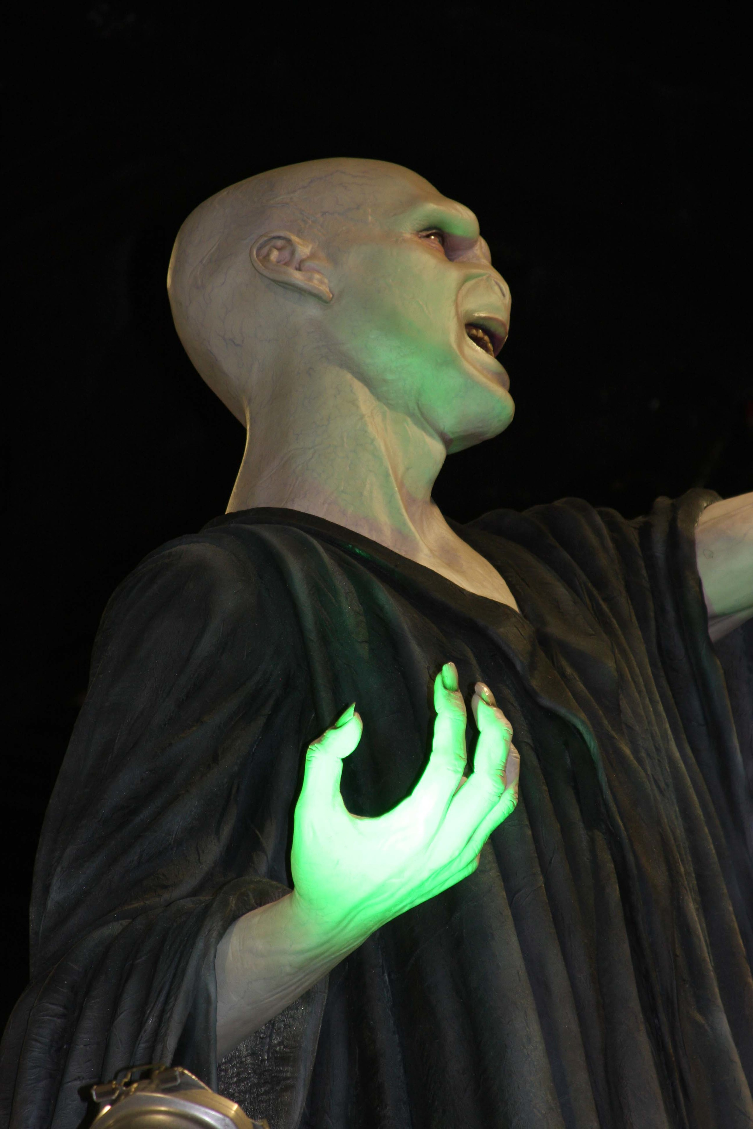 A negative association with Voldemort can reduce out-group bias in adult readers.     Tinyfroglet/Flickr    (CC BY 2.0)