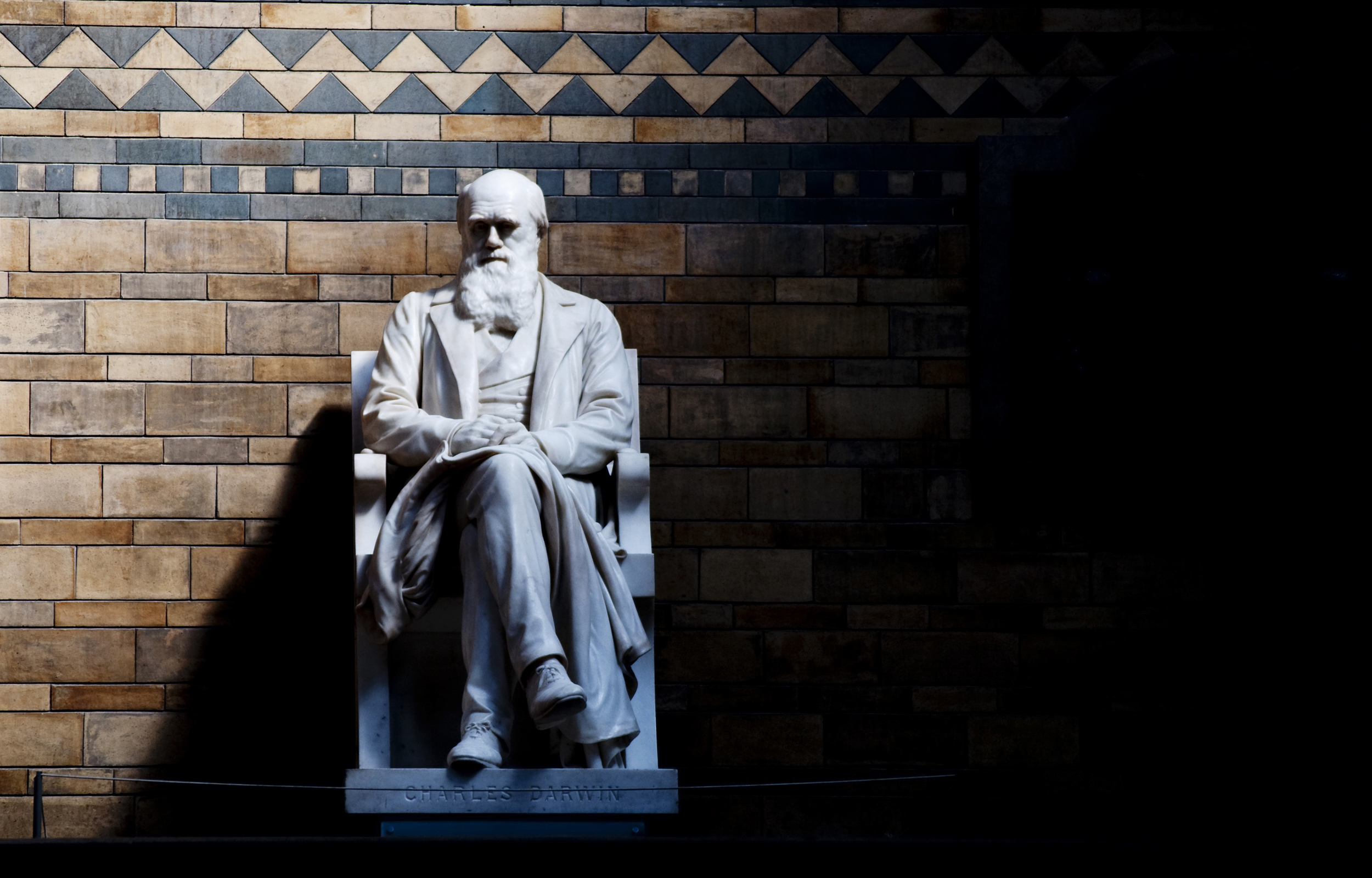 Charles Darwin's statue at the London Natural History Museum.   CGP Grey/Flickr  (CC BY 2.0)