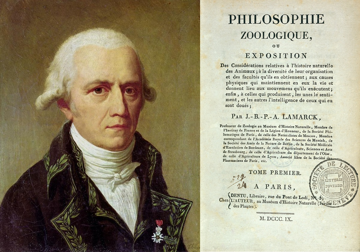 Jean Baptiste de Lamarck ( left ) popularised evolution in Europe with his 1809 book  Philosophie Zoologique  ( right ).   Unknown/Wikimedia Commons  (public domain);  Wellcome Trust/Wikimedia Commons  (CC BY 4.0)