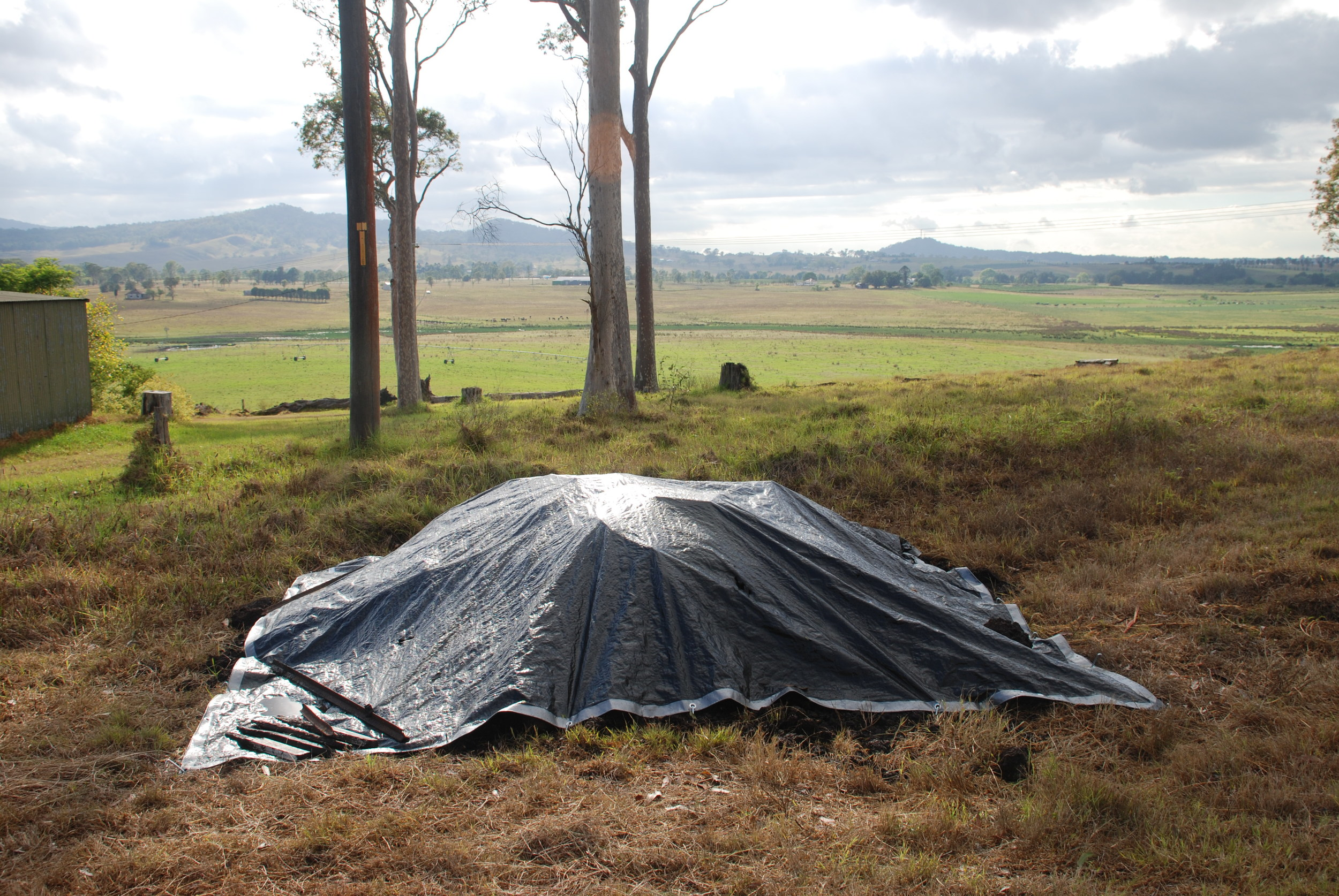 Whale remains buried in a field in the Hunter Valley, NSW. © Sandy Ingleby (used with permission)