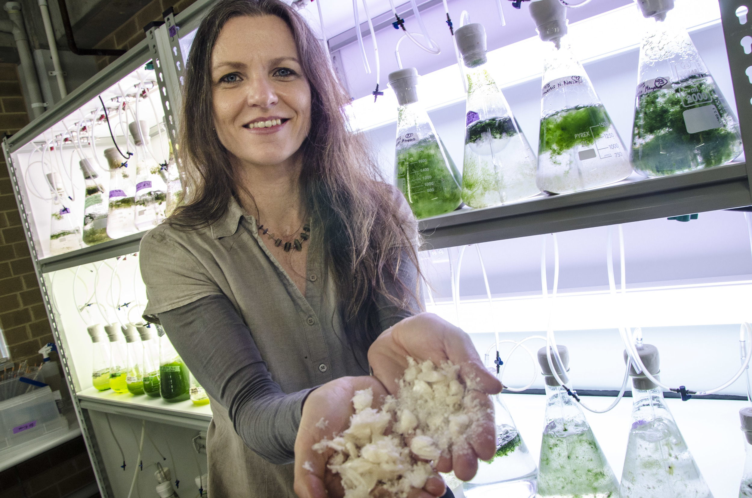 Pia Winberg in one of her company's labs, where seaweed is grown and tested.  © Venus Shell Systems (used with permission)
