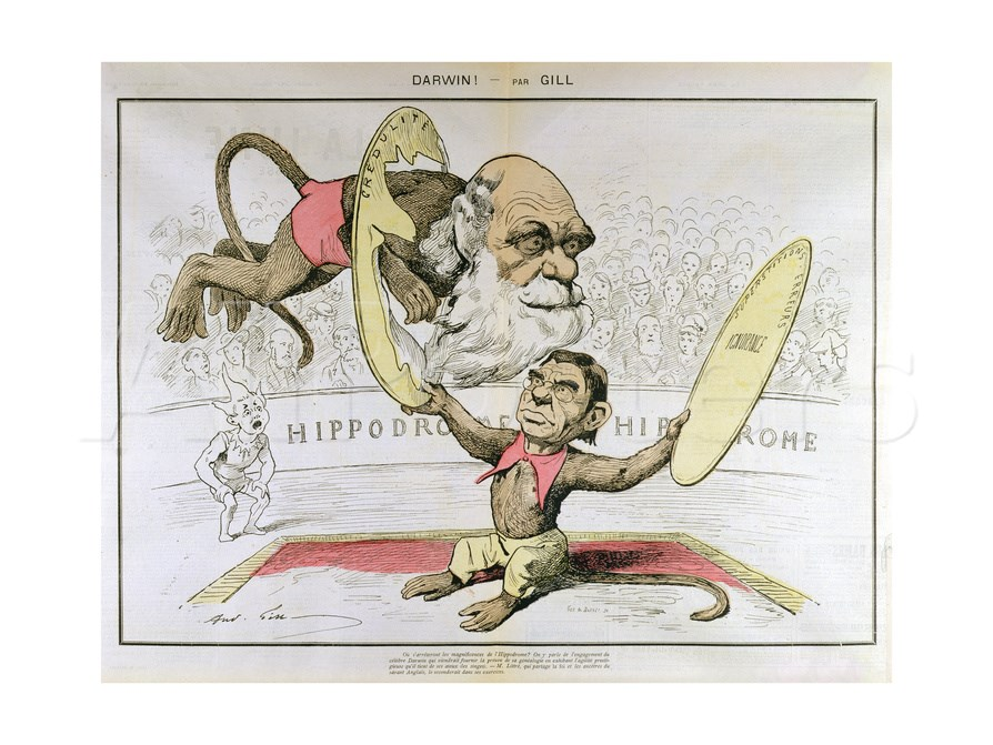 "This rather positive caricature of Charles Darwin from 1878 shows him as a monkey breaking through ""ignorance.""   La Lune Rousse/Wikimedia Commons  (public domain)"
