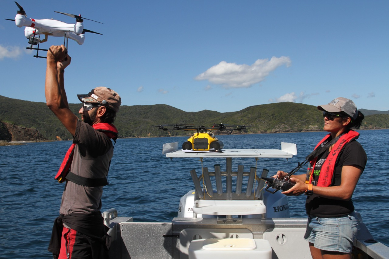 Marine biologist Ticiana Fettermann and a colleague launch a drone for dolphin-tracking research.  ©  Ticiana Fettermann  (used with permission)