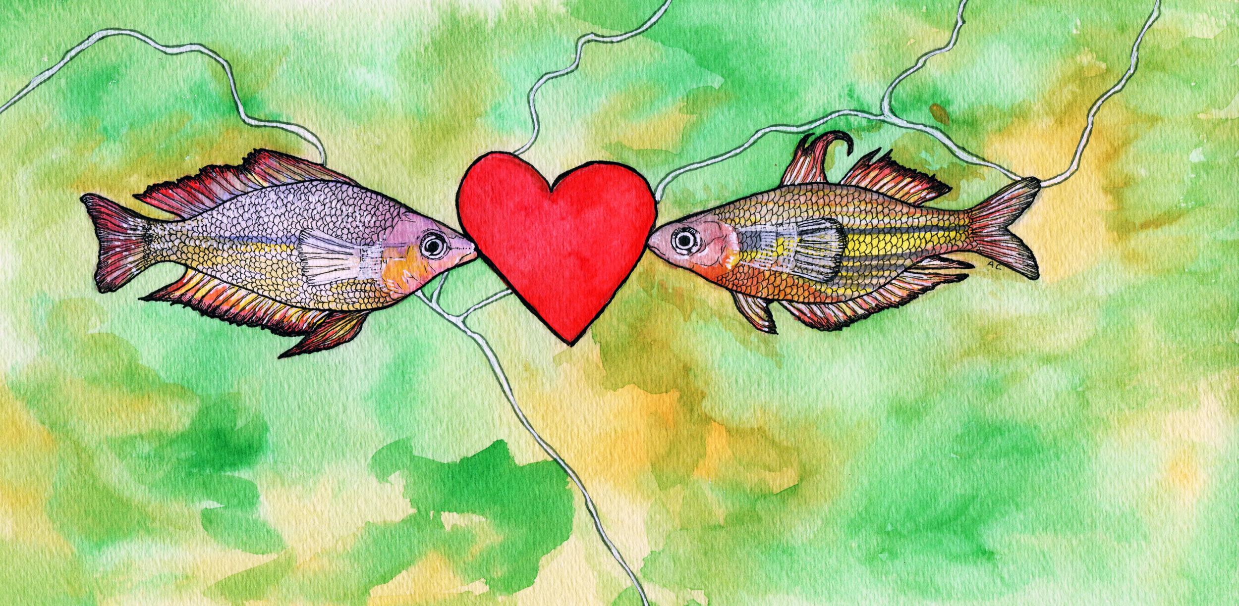 Illustration by  Arpita Choudhury