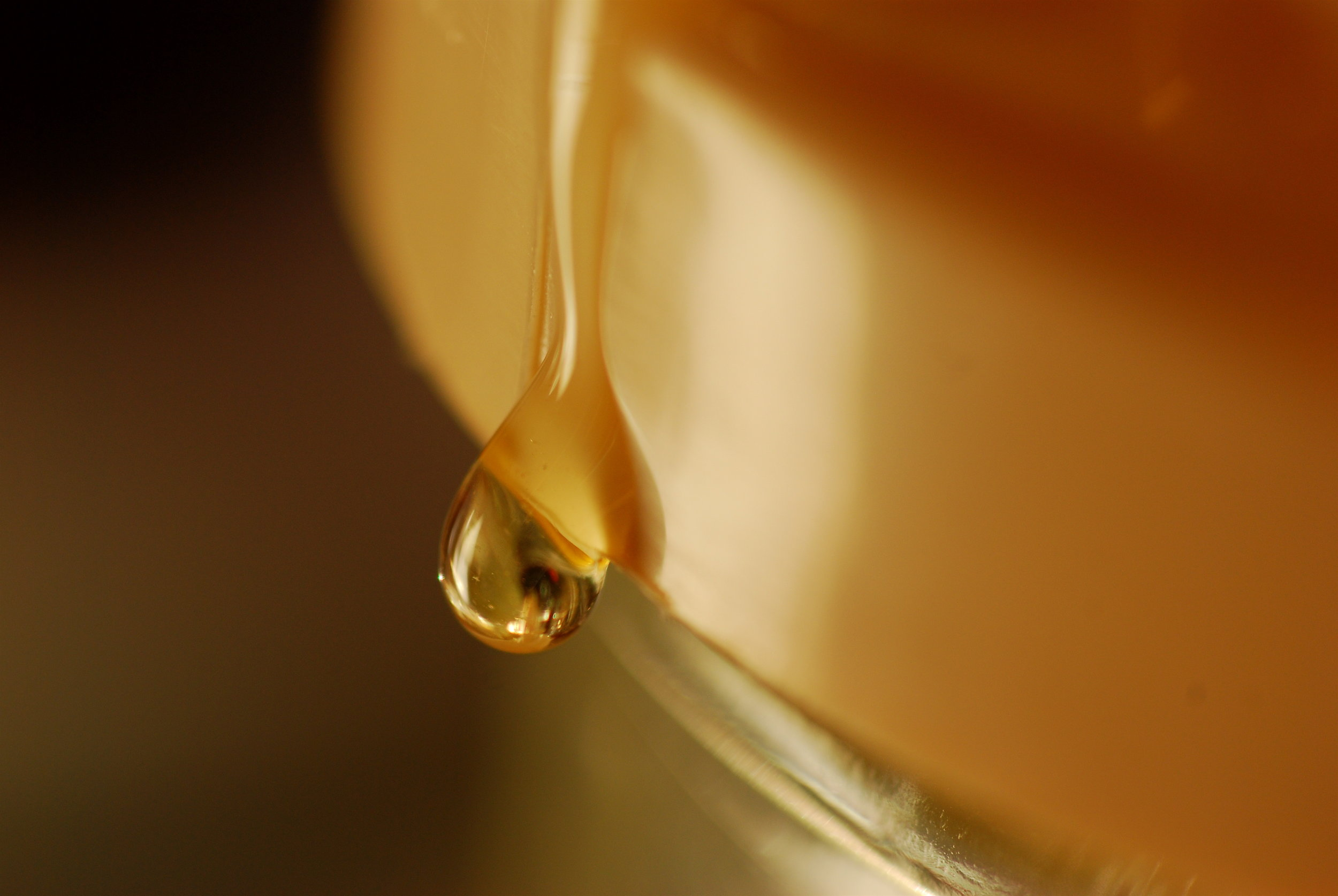 A drop of an ancient antibacterial salve: honey.   Dino Giordano/Flickr  (CC BY 2.0)
