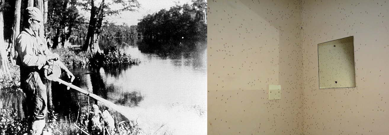 Insecticides such as   dichlorodiphenyltrichloroethane (  DDT) are also used for mosquito control, as seen in the US in 1958 (left) and in a bathroom in Tanzania (right).   Public Health Image Library/Wikimedia Commons  (public domain); Bjørn Christian Tørrissen/Wikimedia Commons  (CC BY-SA 3.0)