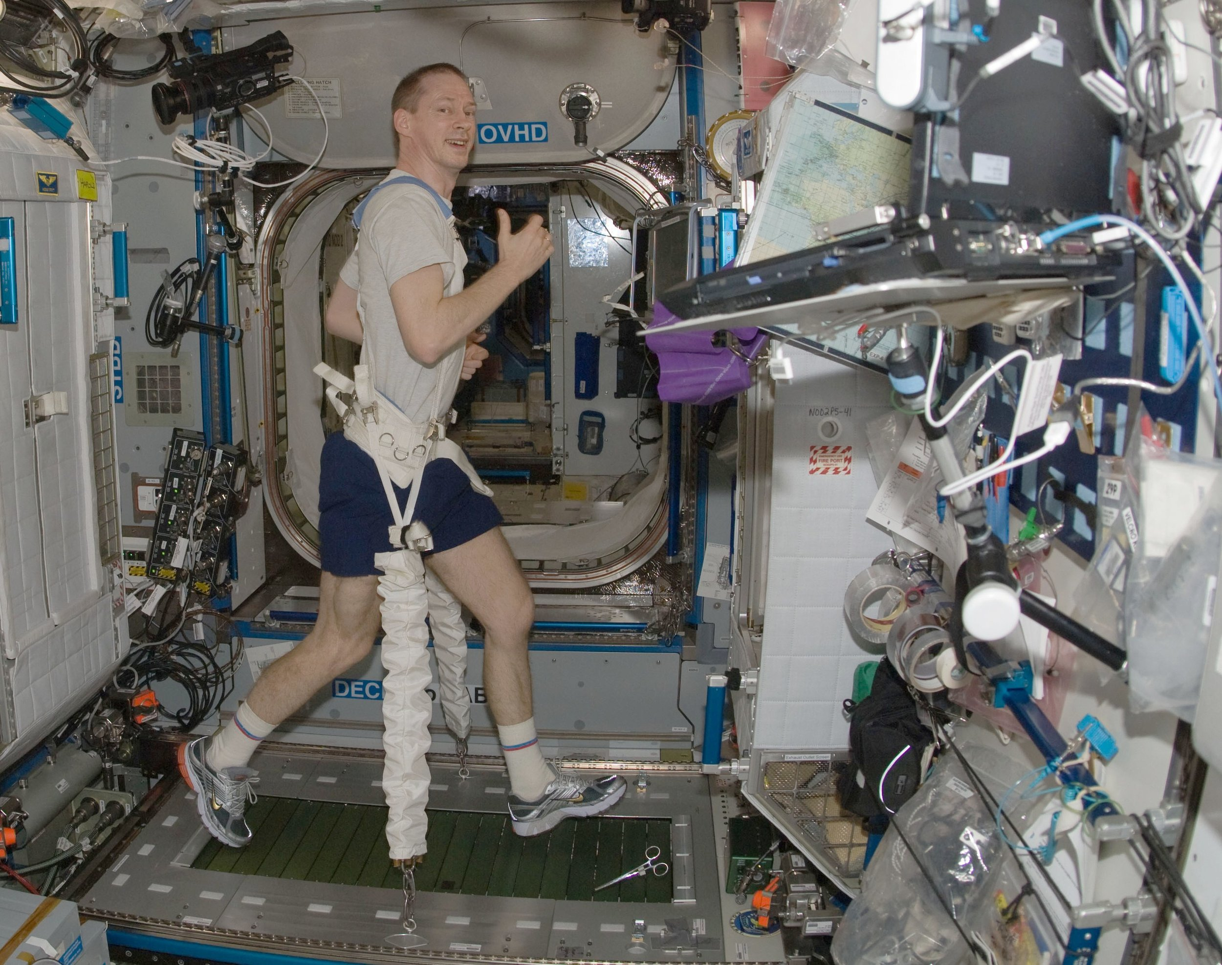 European Space Agency astronaut Frank De Winne exercises on the Combined Operational Load Bearing External Resistance Treadmill (COLBERT) on the International Space Station.   NASA/Wikimedia Commons  (public domain)