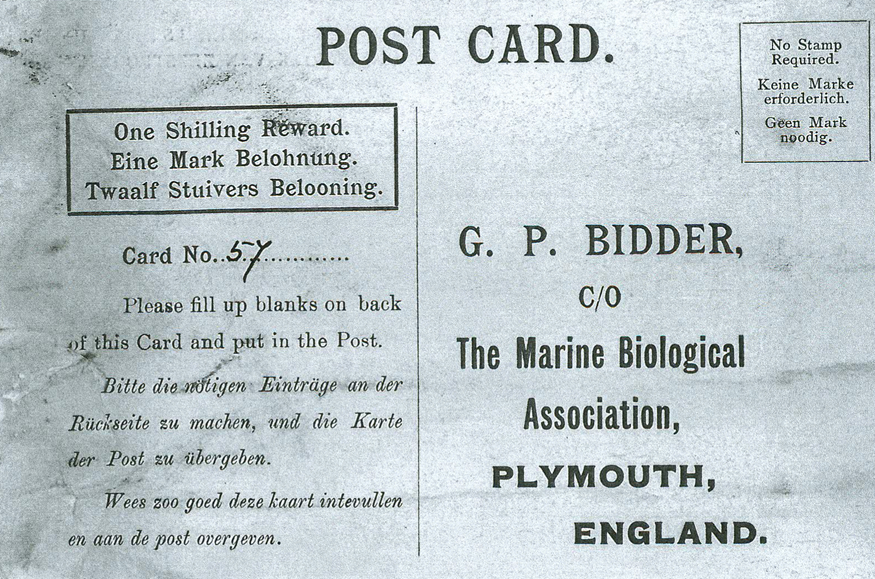 The postcard enclosed in the drift bottles that George Parker Bidder threw into the sea in 1906.  Marine Biological Association (public domain)